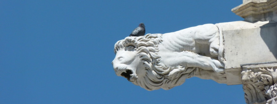 shopping siena tuscany italy souvenirs contrada lion gargoyle