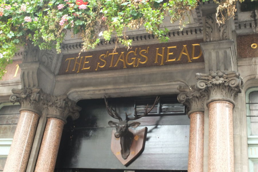 stags head temple bar dublin ireland