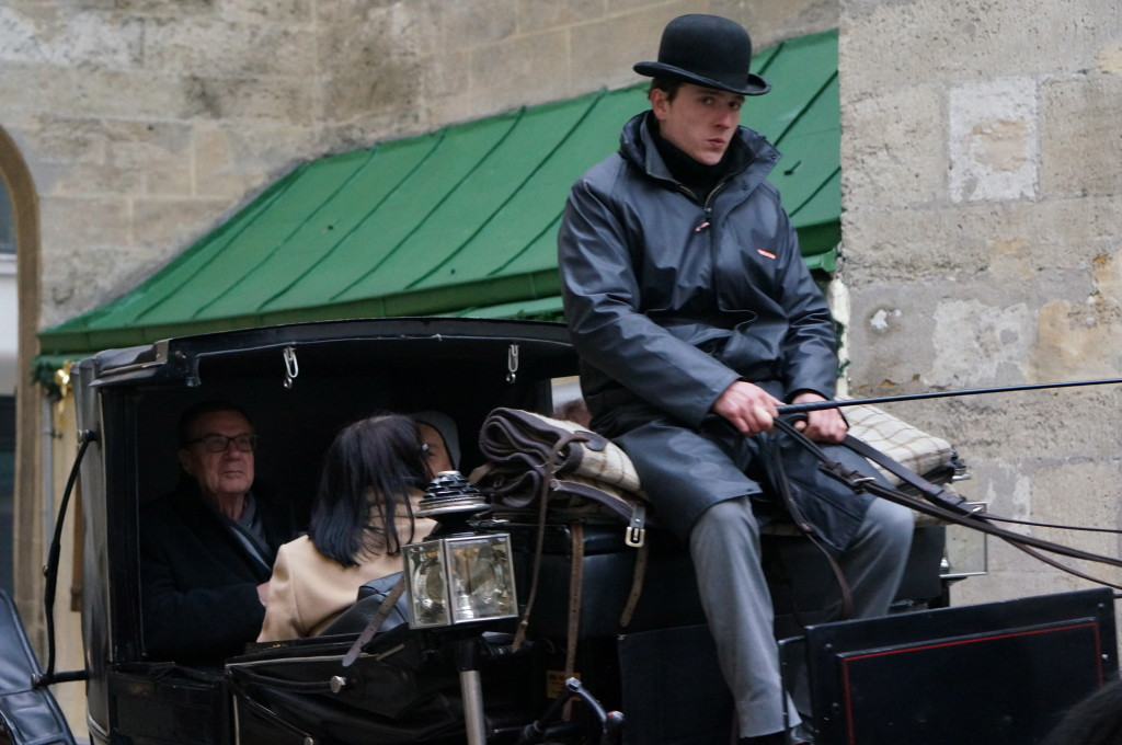 Vienna carraige driver horse