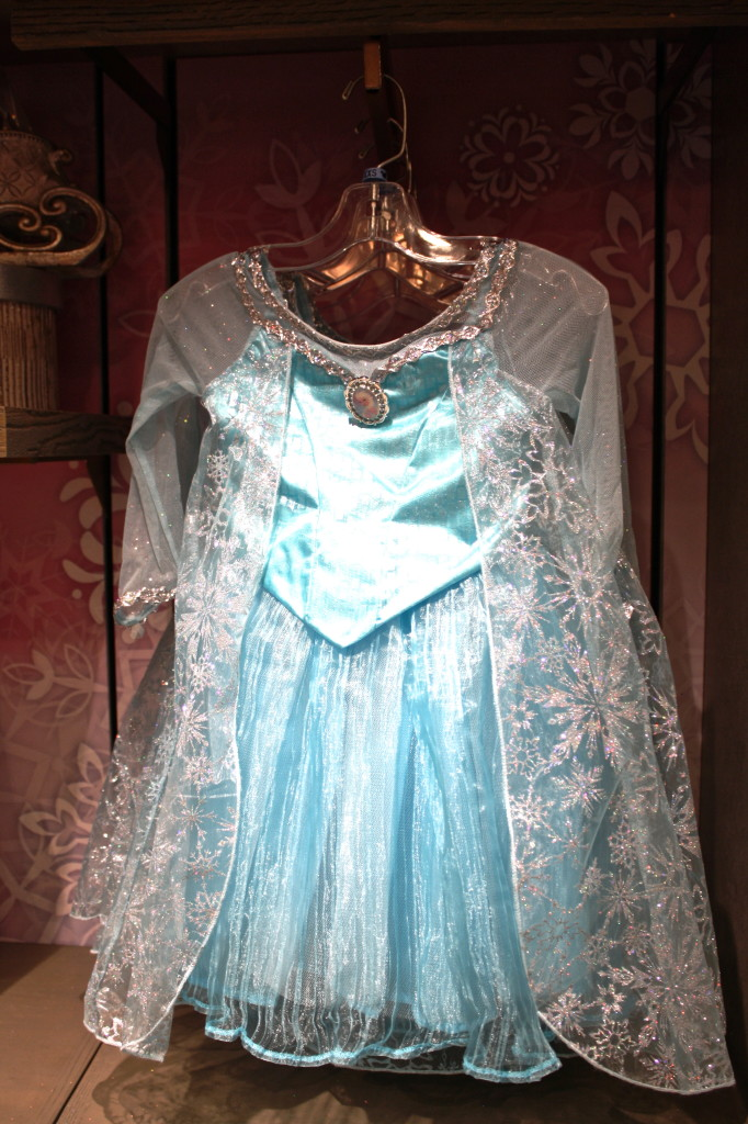 Elsa costume dress Frozen disney world