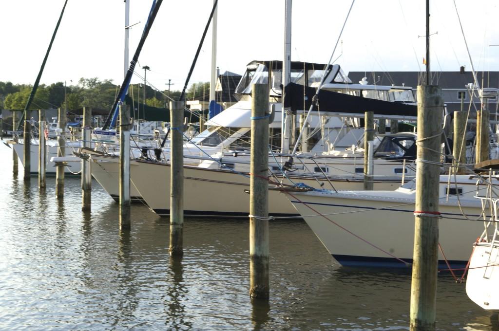 sailboats in marina chesapeake bay rock hall maryland
