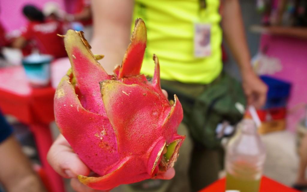 dragonfruit mexico tulum