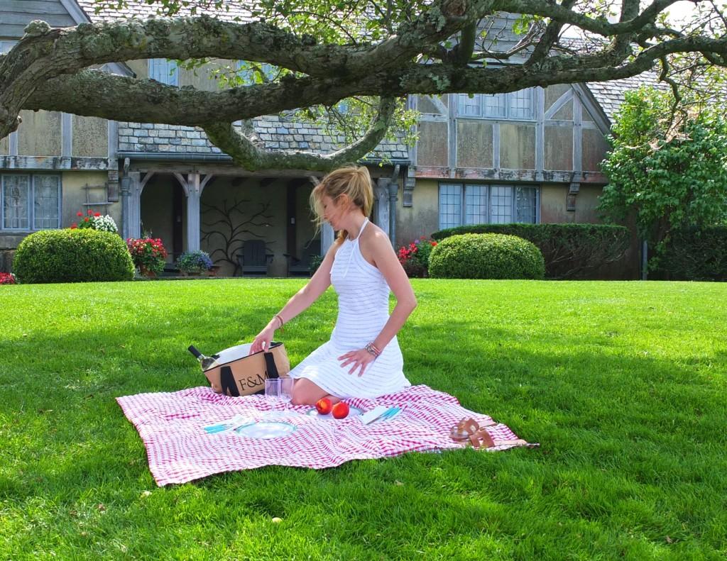 picnic in park topsmead souvenirfinder.com