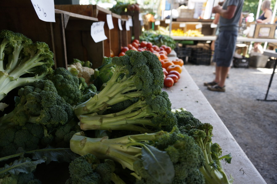 saratoga springs farmers market produce vegetables broccoli new york