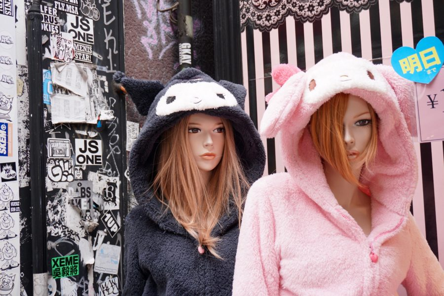 animal hoodies japanese fashion