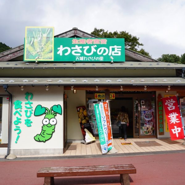 wasabi ice cream store japan