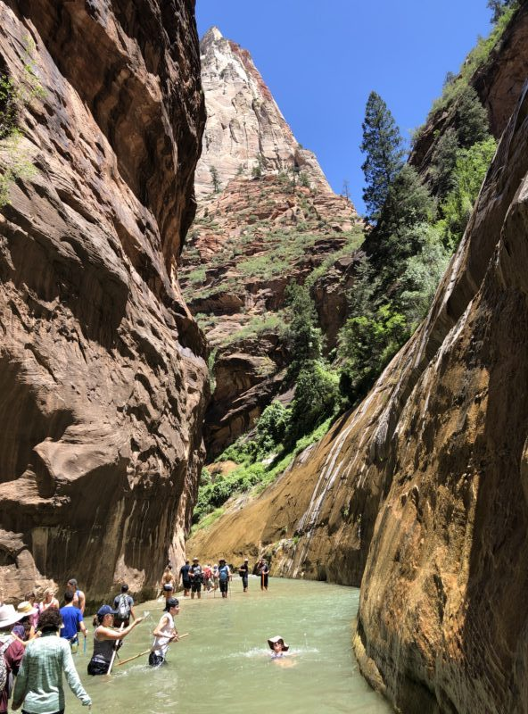 Crowded narrows slot canyon hike best hikes zion national park summer